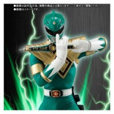 Dragon Ranger - Limited Edition [SH figuarts]..