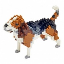 TICO Beagle..